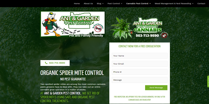 What are the various types of spider mite controls? Check here!!